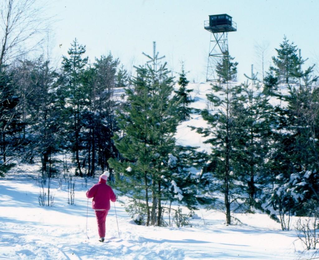 Tornet på 1980-talet
